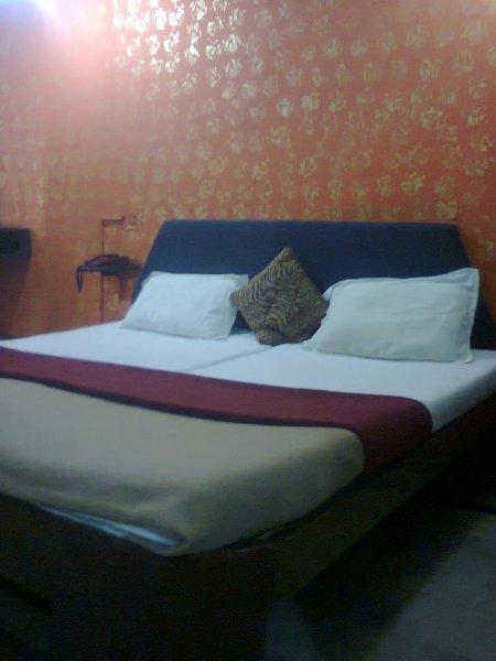 Hotel Aditya Palace