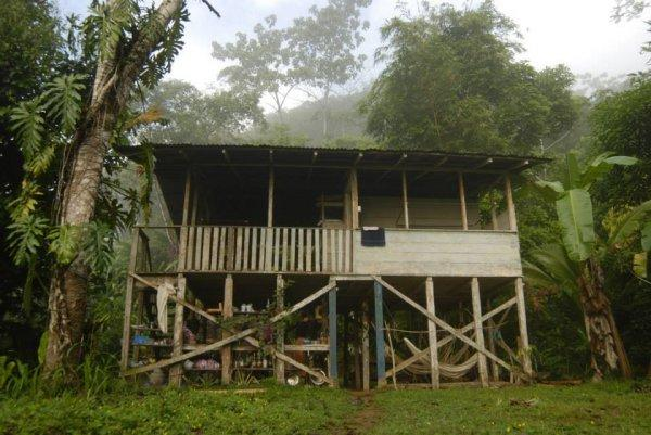 Auberge Bolita Rainforest