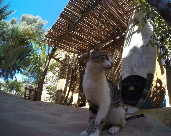 Hospedaje La Quebrada
