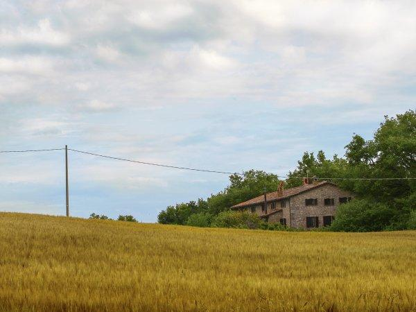 Country House Villa Selva