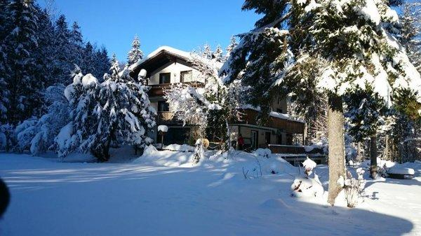 The TreeHouse Backpacker Hotel