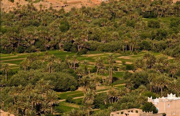 Hotel Riad Agraw