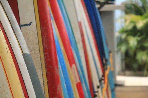 Auberge Blue Trailz  & Surfcamp