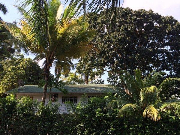Casa Nativa Panama
