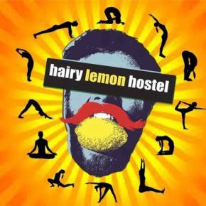 Auberges de jeunesse - Hairy Lemon
