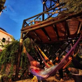 Auberges de jeunesse - Auberge Makuto Backpackers