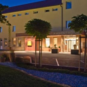 Auberges de jeunesse - Ambient hotel