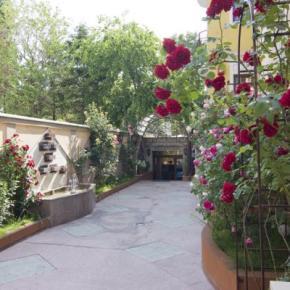 Auberges de jeunesse - Hotel Michelangelo