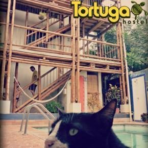 Auberges de jeunesse - Auberge La Tortuga