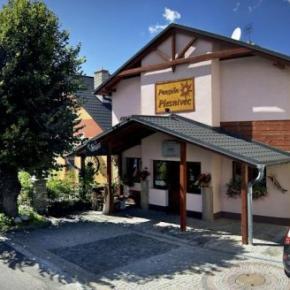 Auberges de jeunesse - Penzion Plesnivec