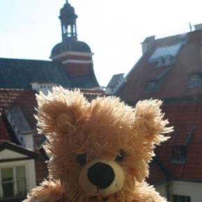 Auberges de jeunesse - Auberge Teddy Bear  Riga
