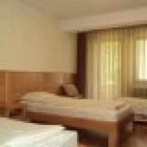Hotel Borici