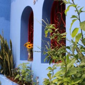 Auberges de jeunesse - Auberge Red Blue