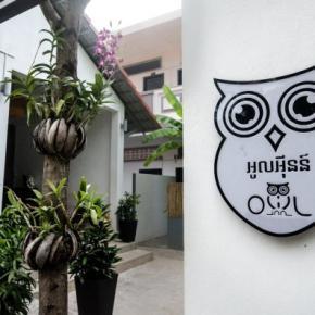 Auberges de jeunesse - Owl Inn