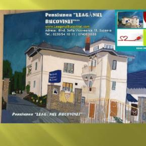 Auberges de jeunesse - Leaganul Bucovinei Pension***