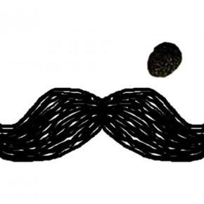 Auberges de jeunesse - Auberge Moustache  Jaipur