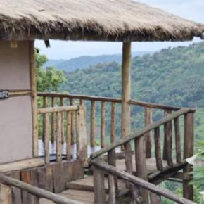 Auberges de jeunesse - Gorilla Mist Camp