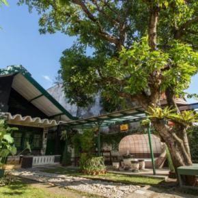 Auberges de jeunesse - Mango Tree Dipudjo Homestay