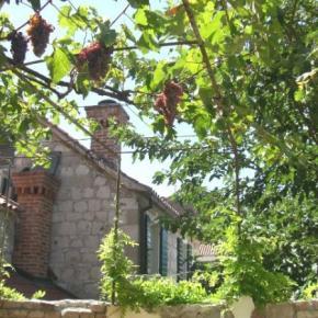 Auberges de jeunesse - Auberge  Split Garden