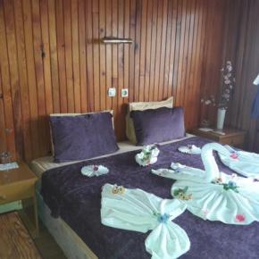 Auberges de jeunesse - Antonios Motel