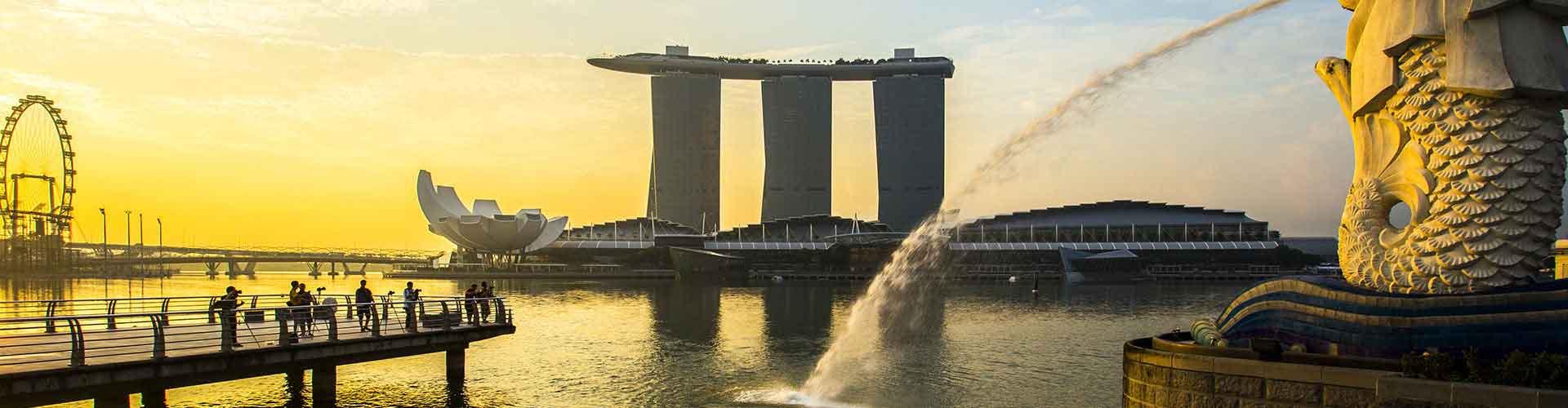 Singapour - Appartements dans le quartier de Toa Payoh. Cartes pour Singapour, photos et commentaires pour chaque appartement à Singapour.